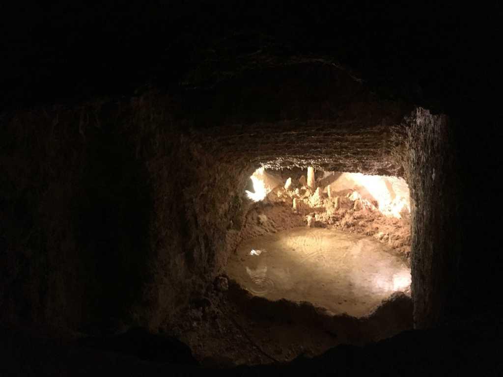 Harrison's Cave mini lac