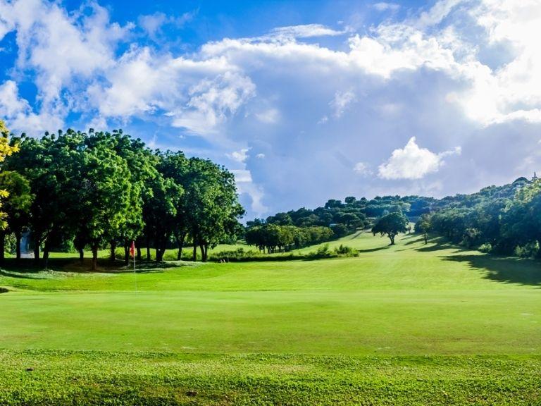 Cedar Valley Golf Course Antigua et barbuda trip caraibes